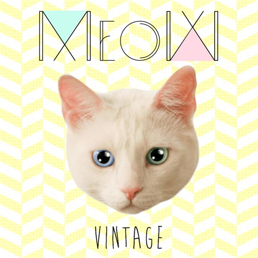 MeowVintageLNV (2)
